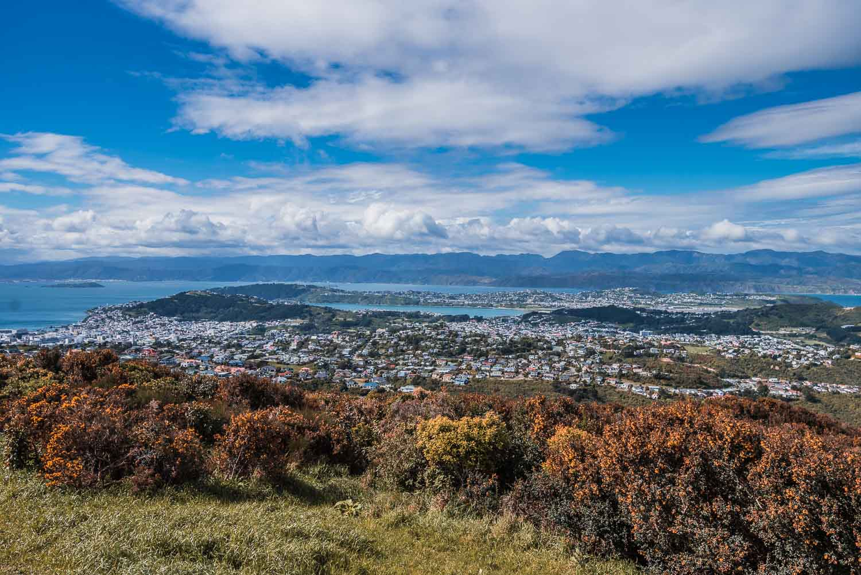 Where is Hot in February | Wellington, New Zealand