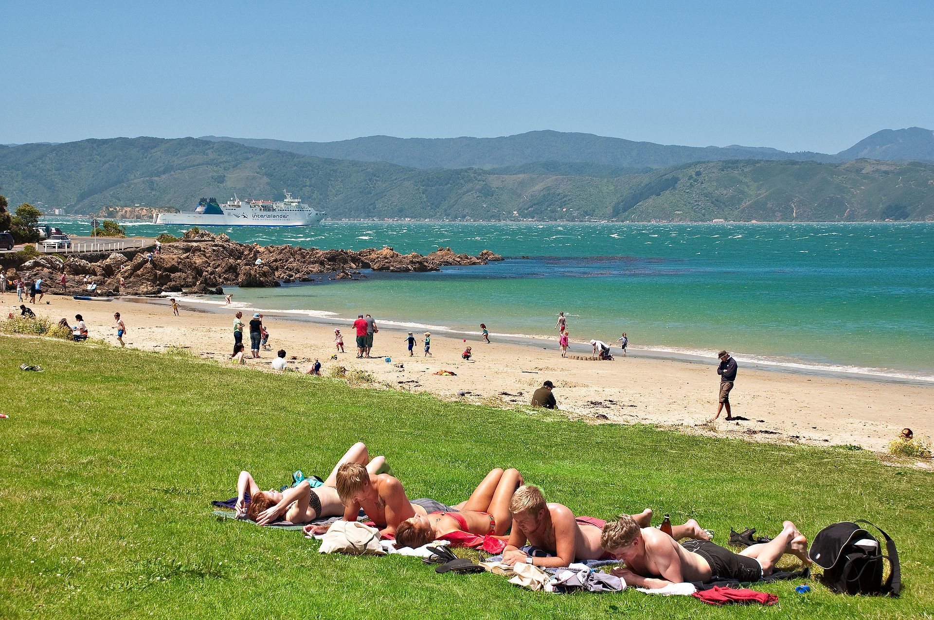 Scorching Bay - Best Things to do in Wellington NZ