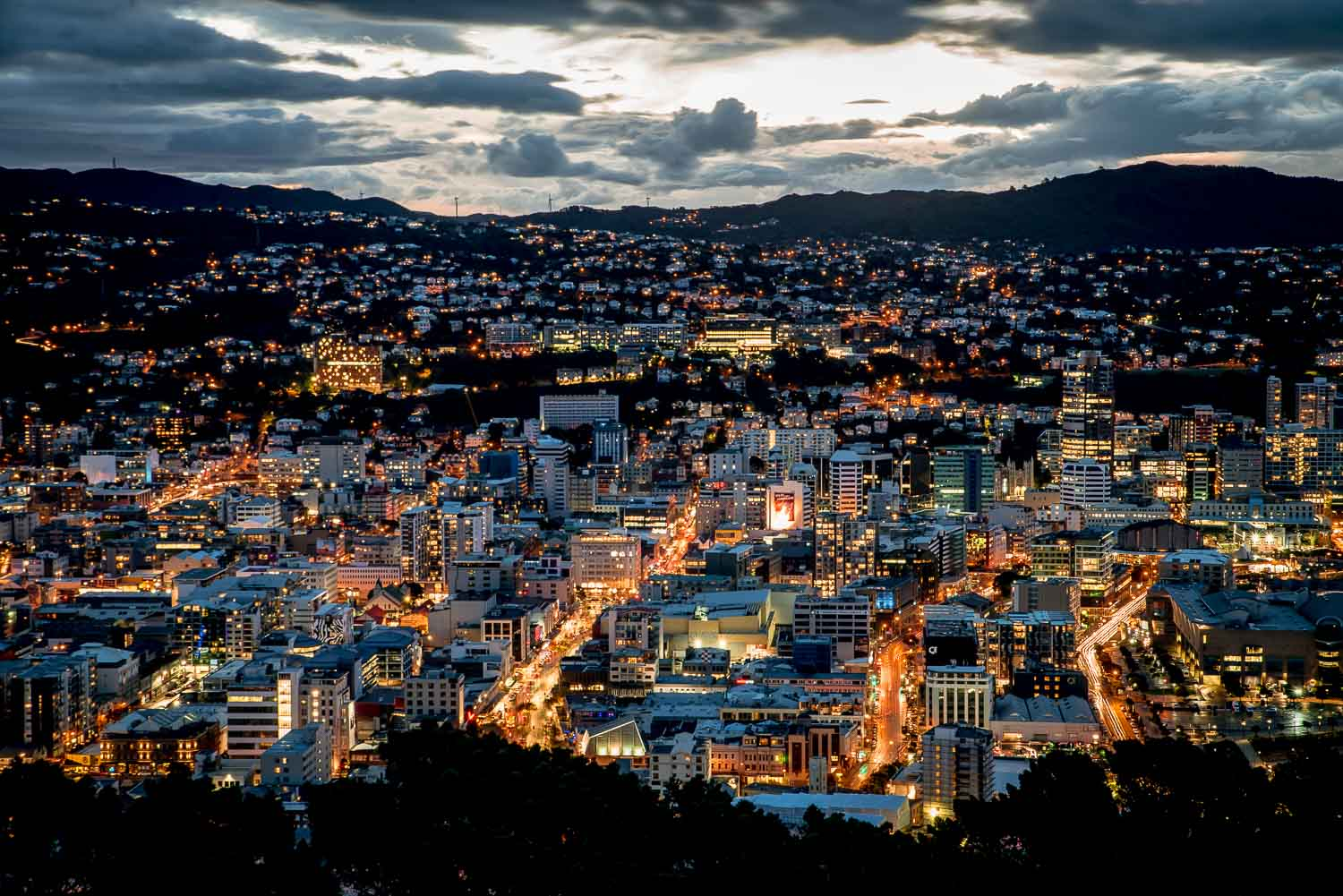 Mount Victoria - Things to do in Wellington