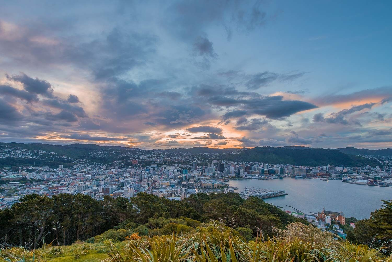 Things to do in Wellington 01