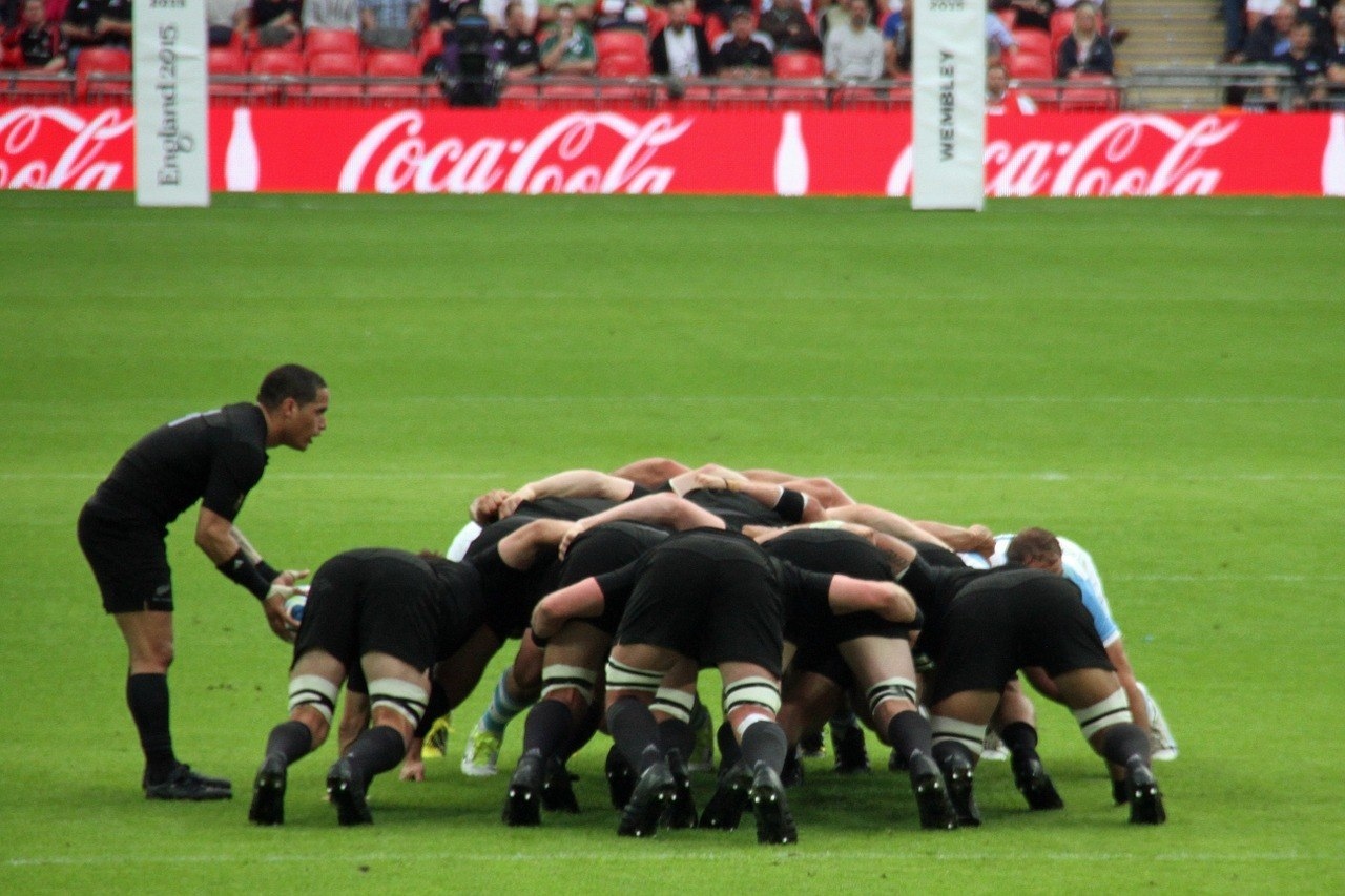 Wellington NZ Rugby - Best things to do