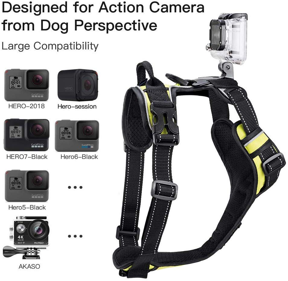 GoPro Dog Harness - Fun Cheap Gifts for Photographers