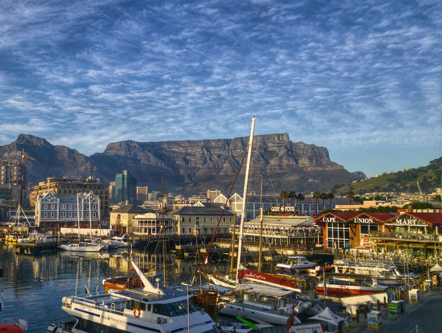 Best Airbnbs in Cape Town, South Africa 2020