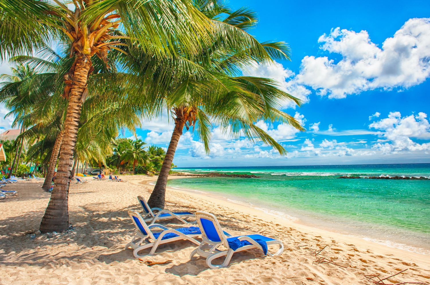 Barbados | Where is Hot in February
