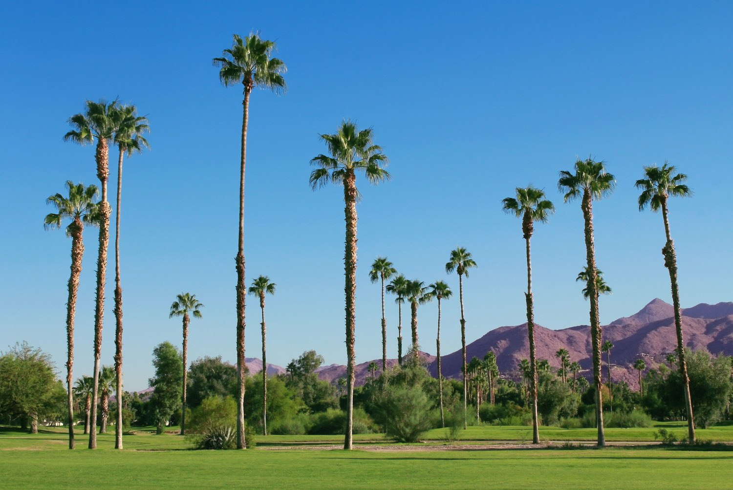 Palm Springs, California - Hot Places to Visit in February