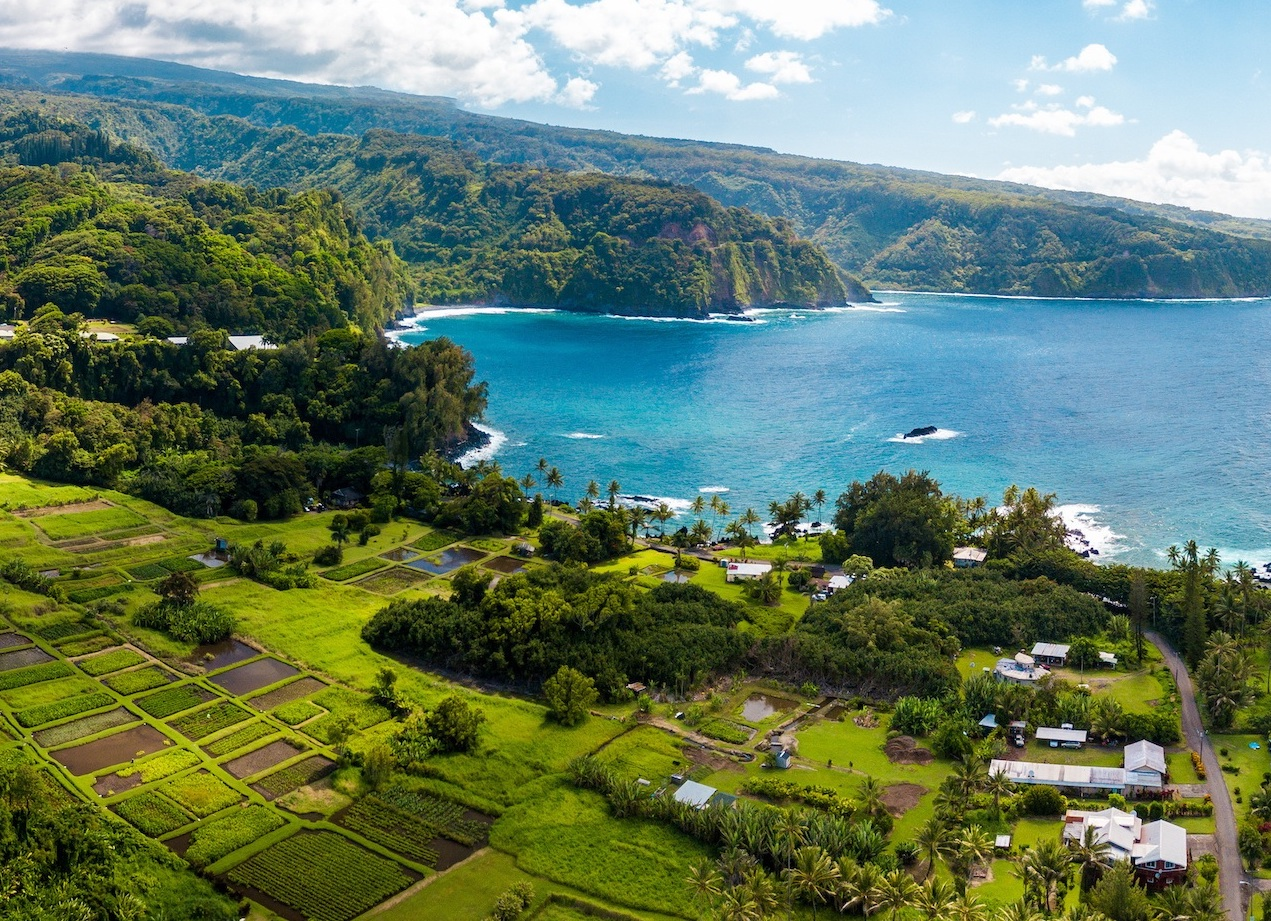 Road to Hana - Best Airbnbs in Hawaii