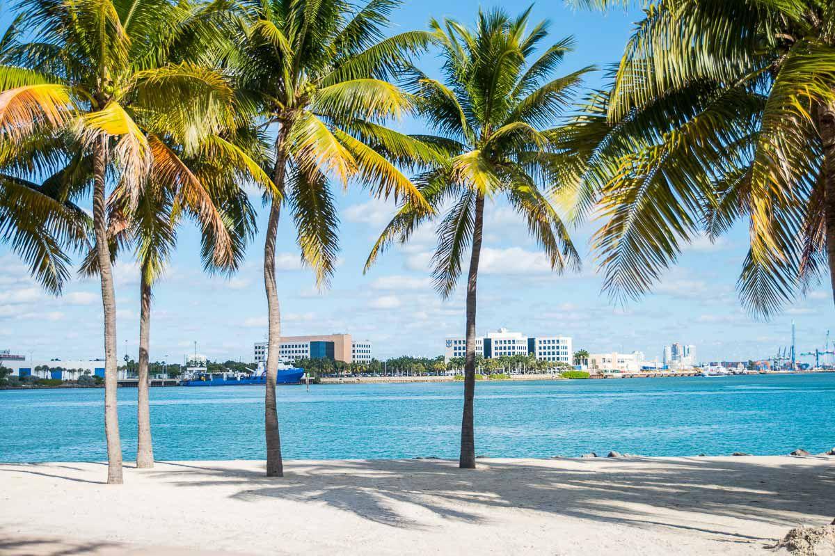 Romantic Airbnbs in Miami Beach