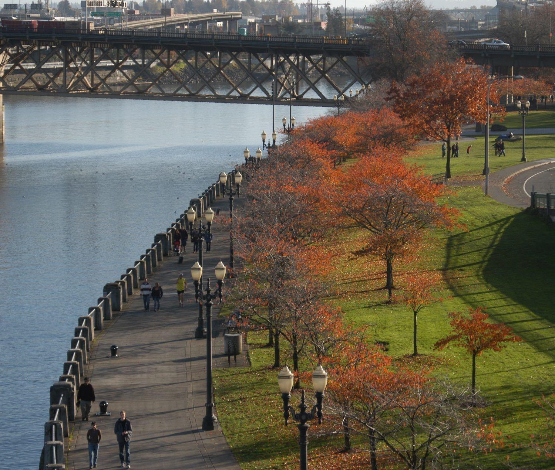 Short Term Rentals - Airbnbs in Portland