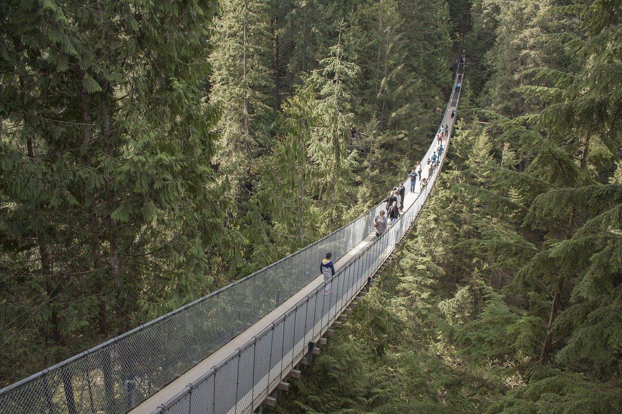 capilano bridge - airbnbs in vancouver