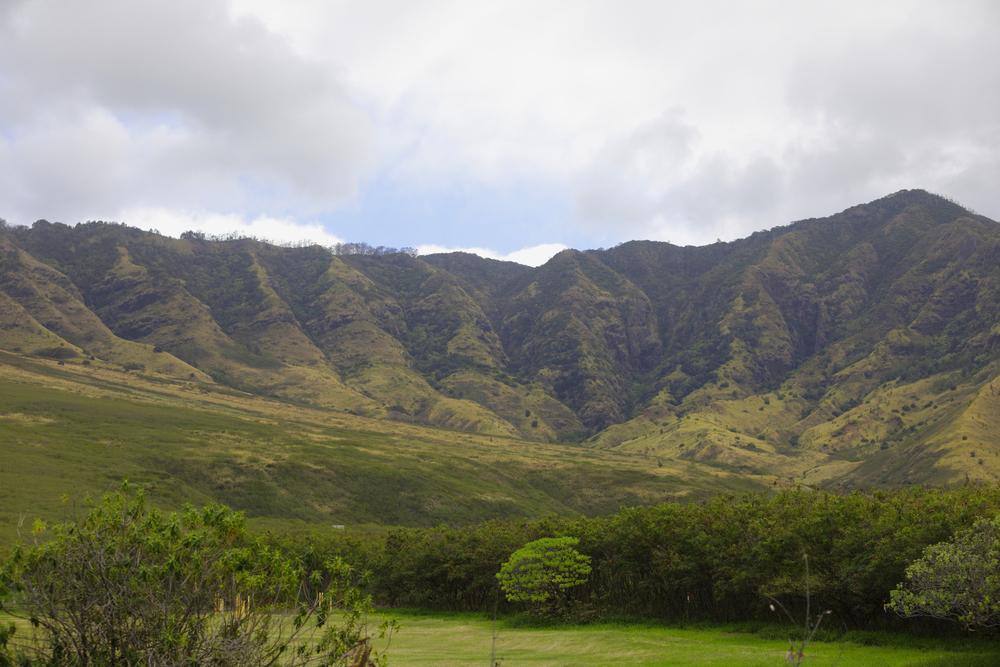 Beach Airbnbs In Oahu