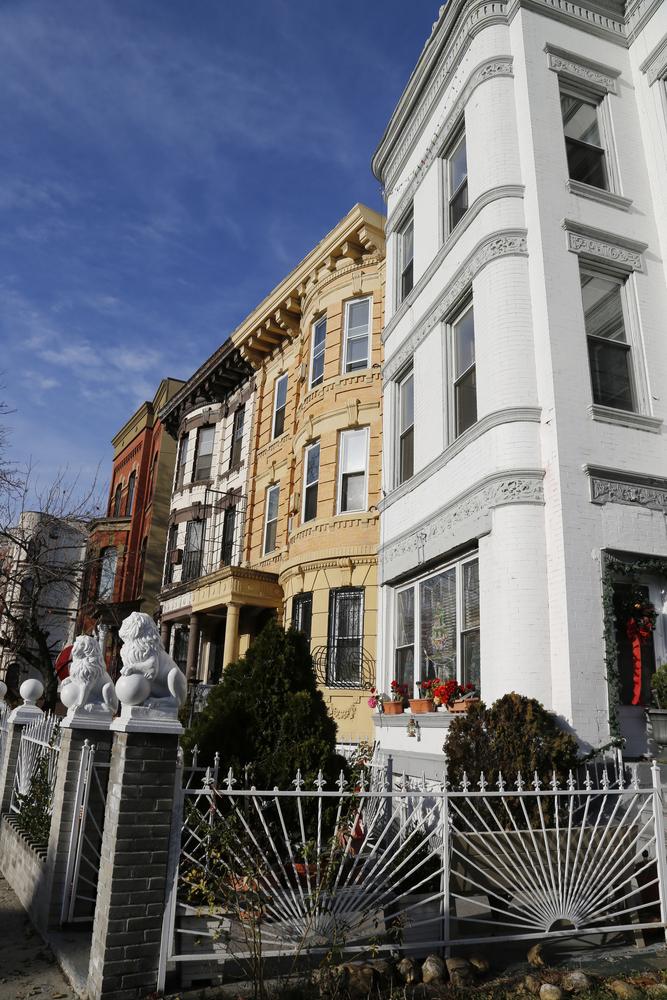 Bedford Stuyvesant Brooklyn Airbnb