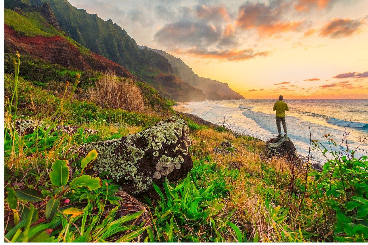 Cheap Airbnbs In Oahu