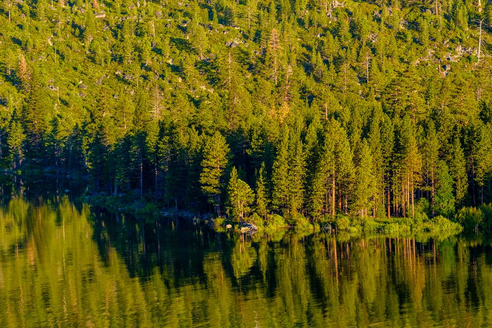 Unique Lake Tahoe Airbnb