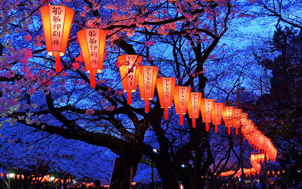 Beautiful Quotes About Japan