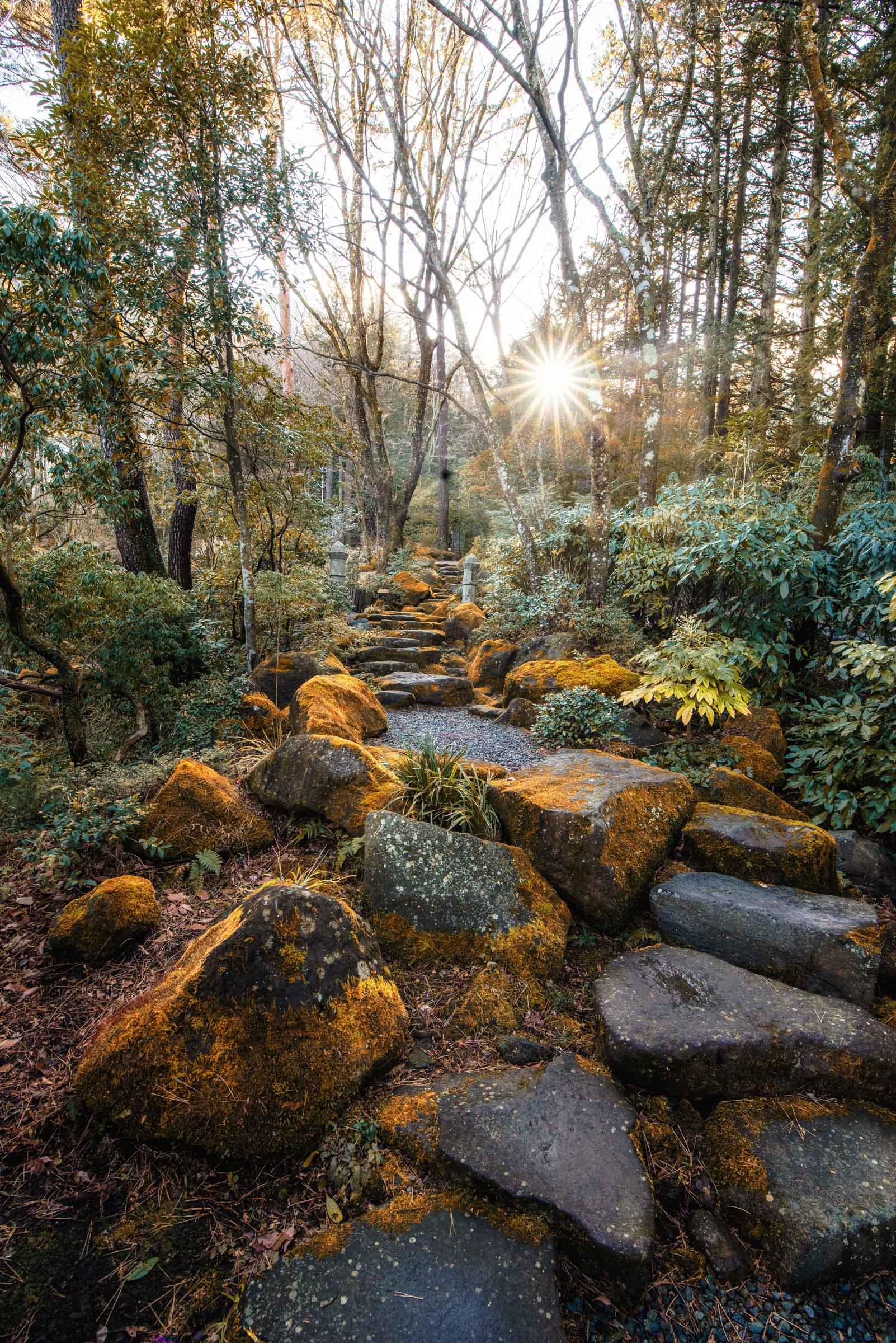 Hakone, Japan Gardens