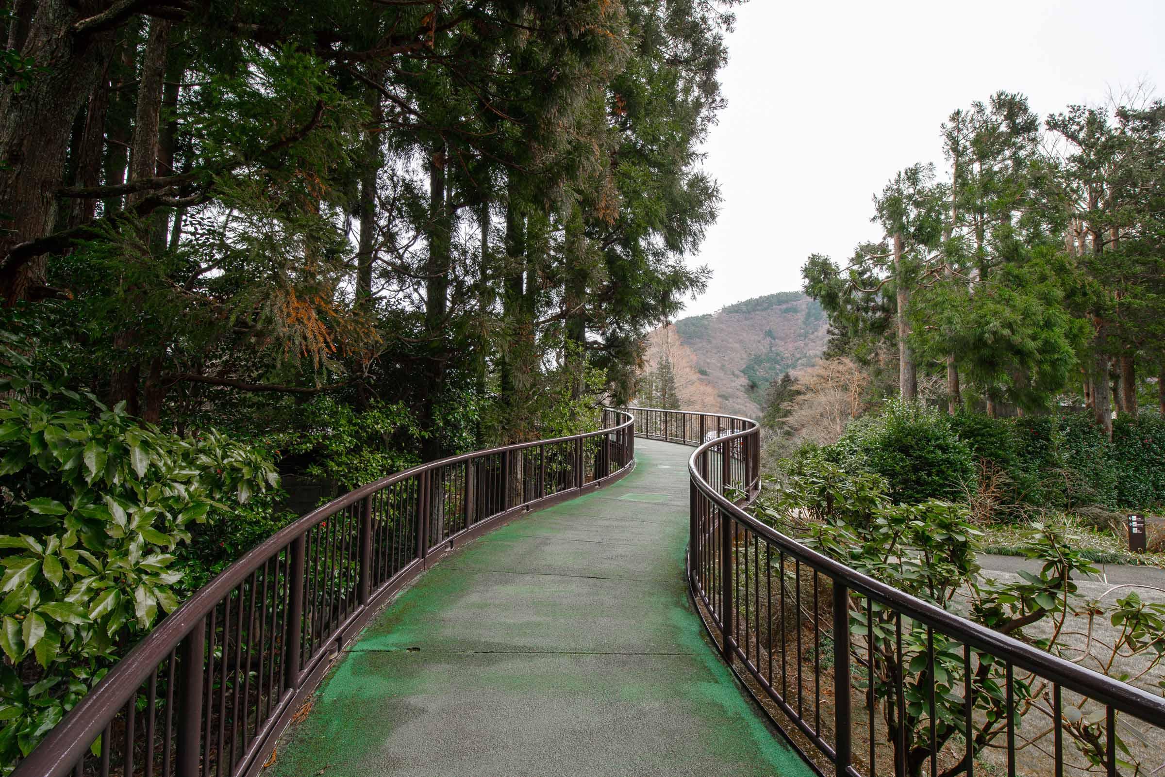 Hakone, Japan things to do