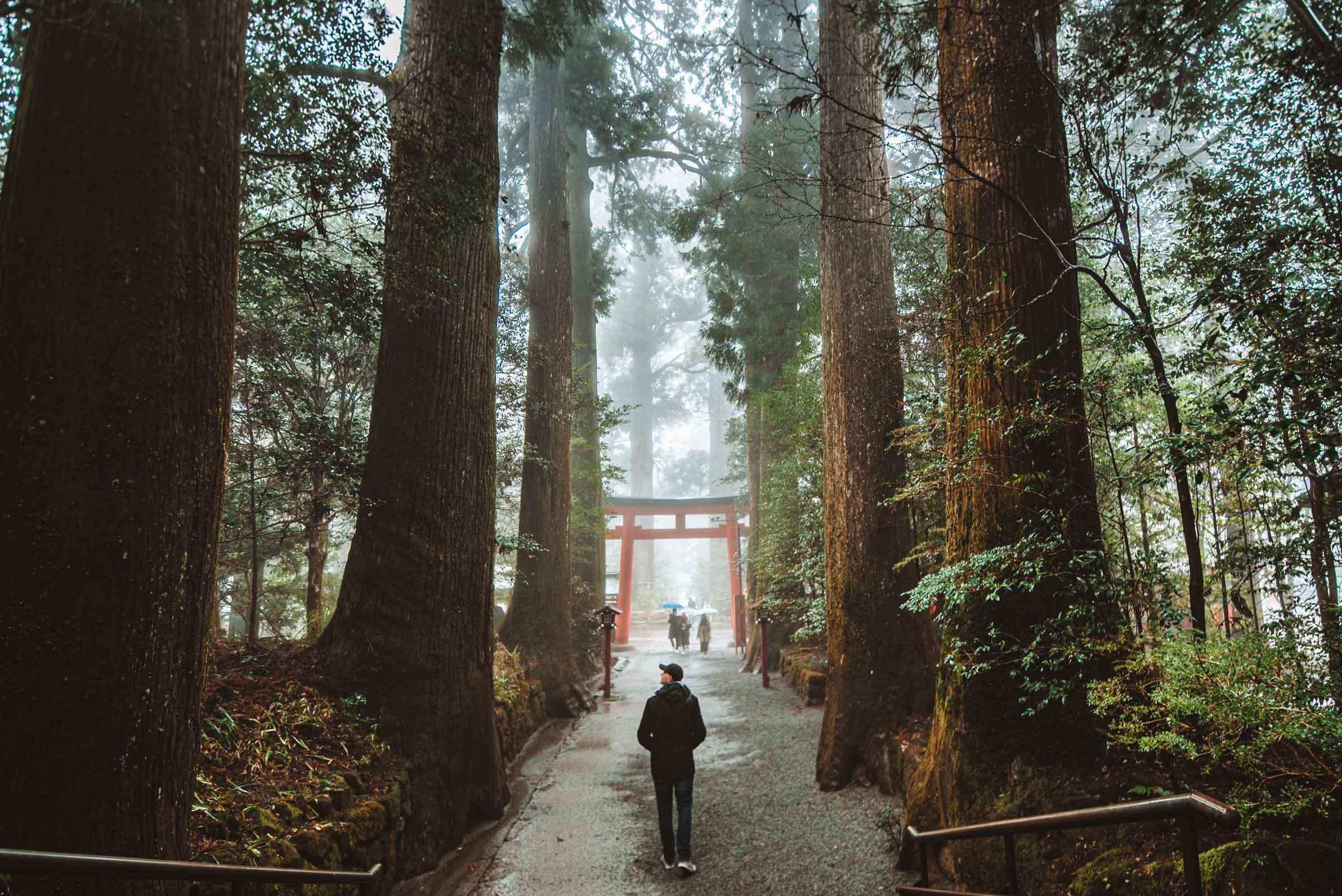 Hakone Shrine - Places to visit in Hakone