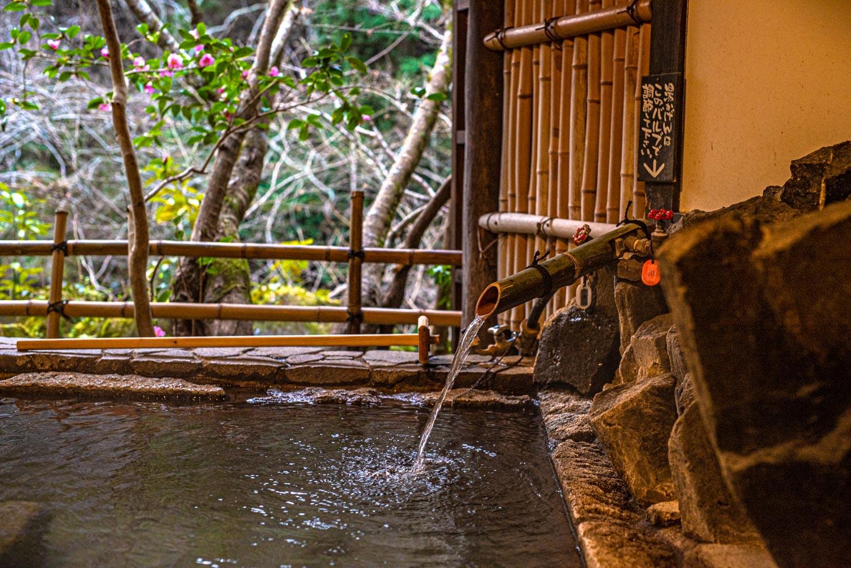 Hotel Sanso Tensui Onsen, Oita, Japan