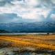 Lake Komo, Sado Island