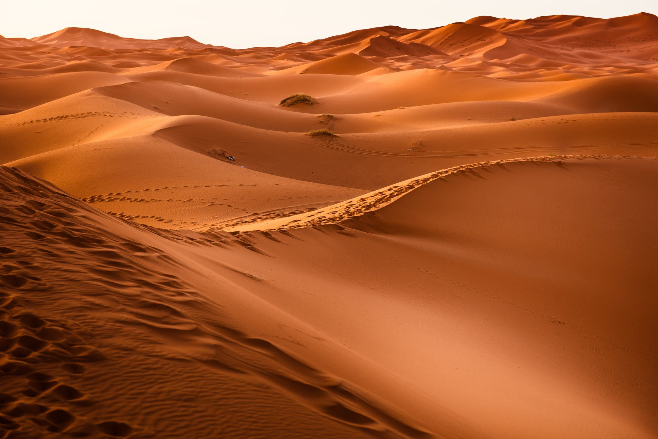Morocco Desert Airbnb