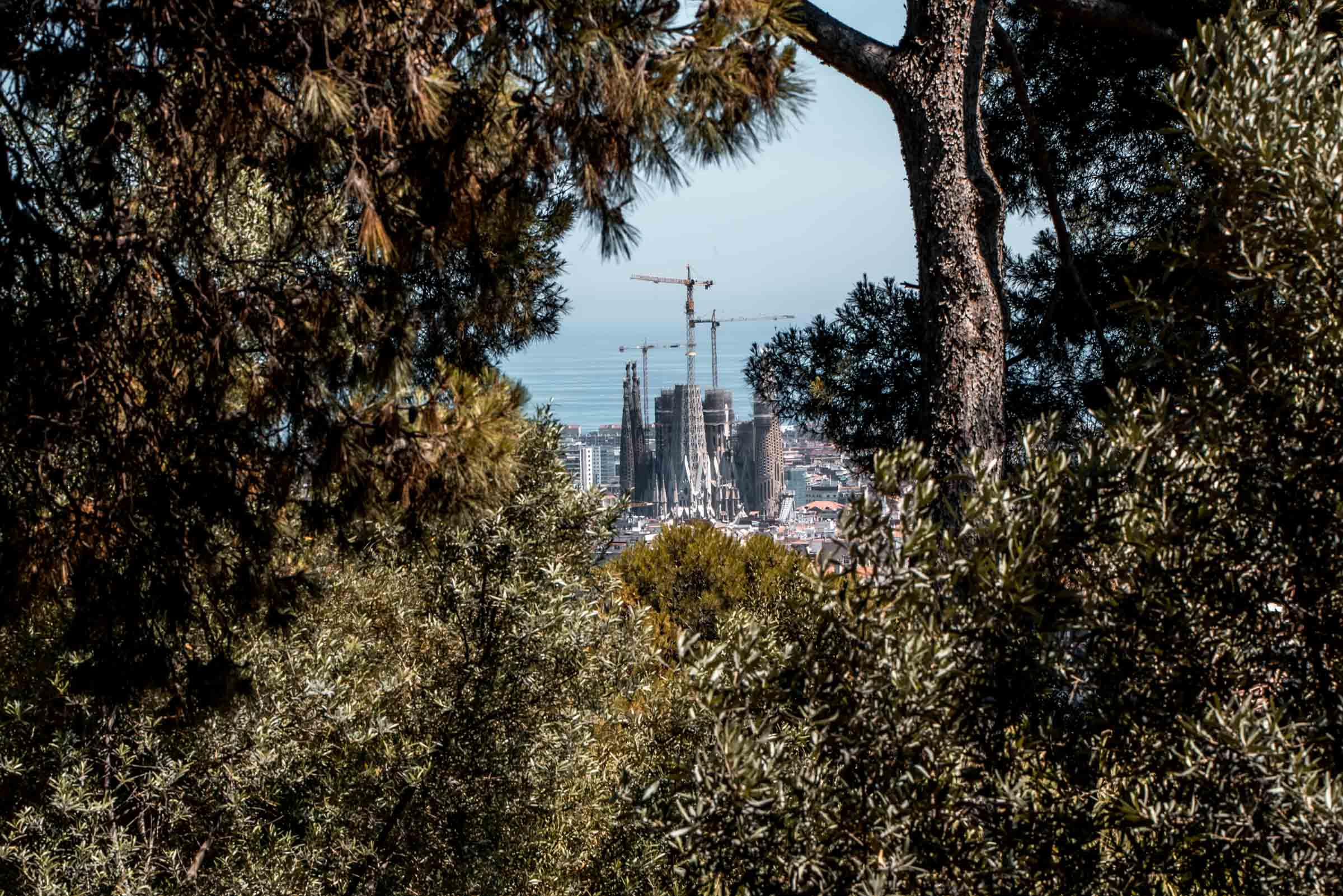 Parc Guell - 48 Hours in Barcelona