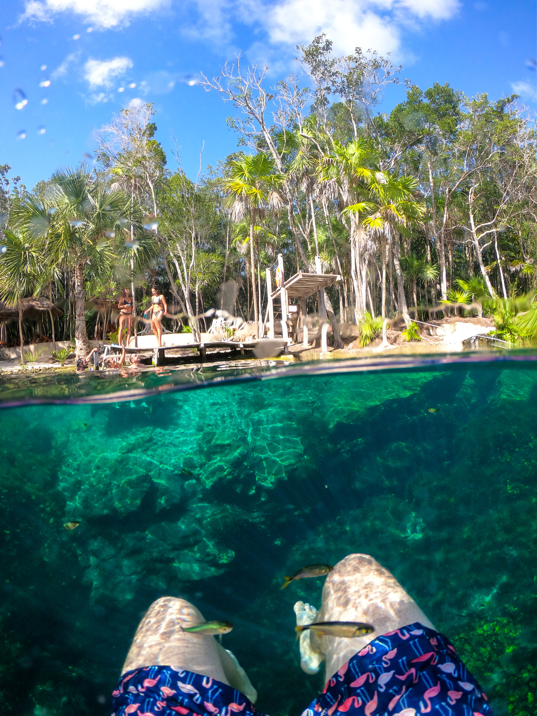 Cenote - Tulum Things to Do
