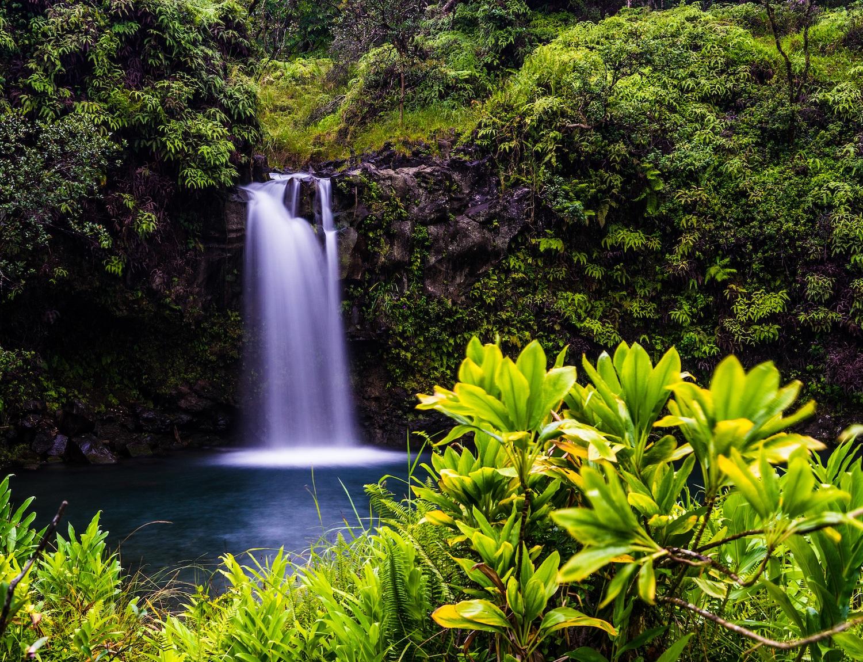 Maui Honeymoon Airbnbs
