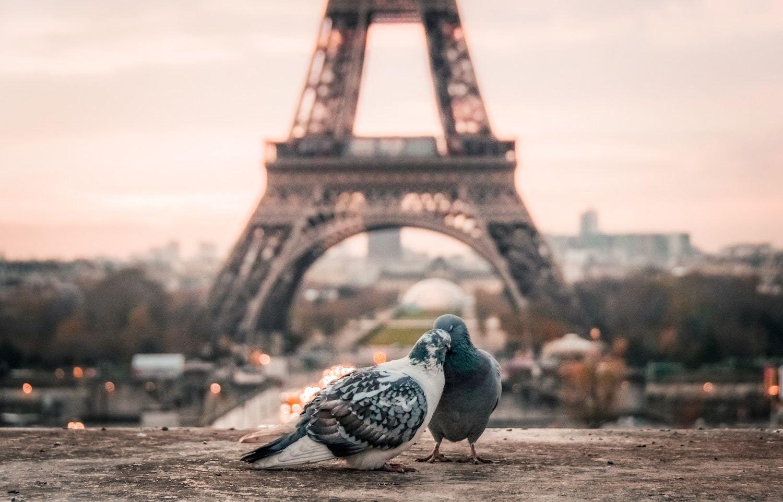 Paris Quotes for Instagram