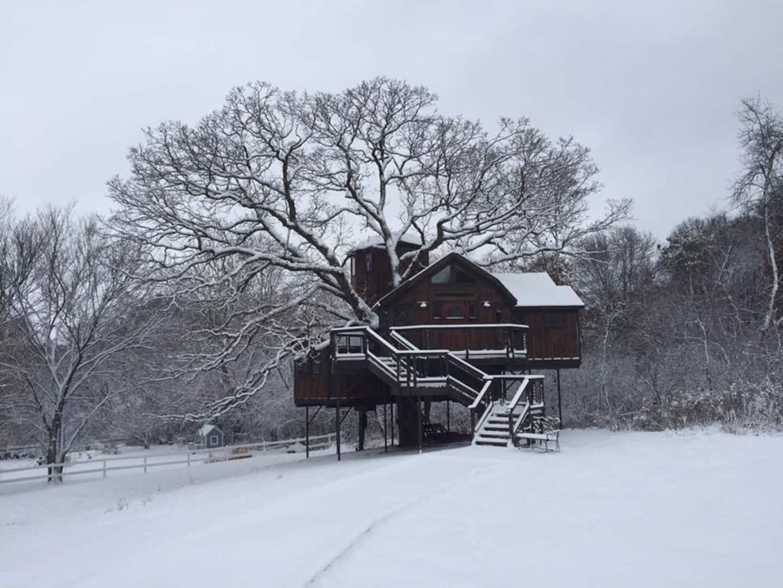 Treehouse Airbnb Minneapolis