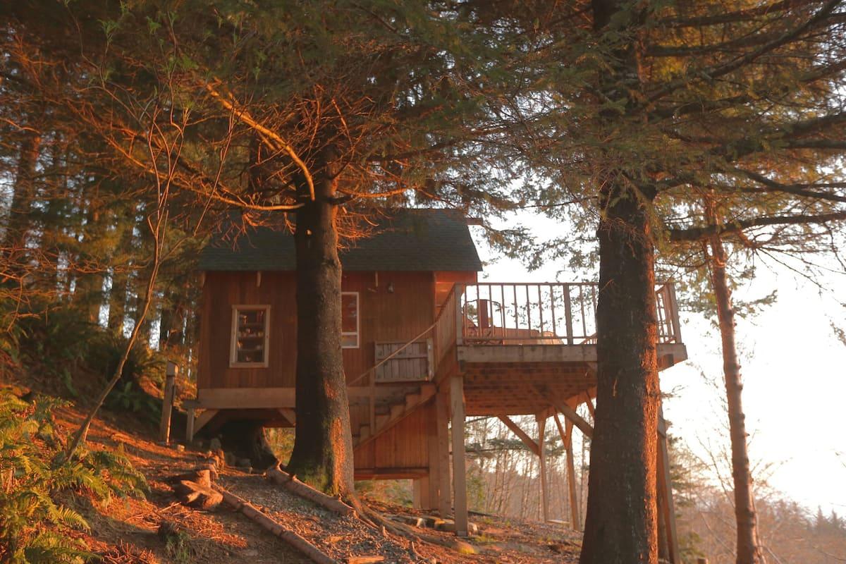 Treehouse Airbnb Oregon Coast