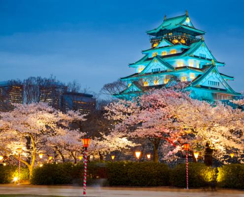 Best Japan Airbnbs