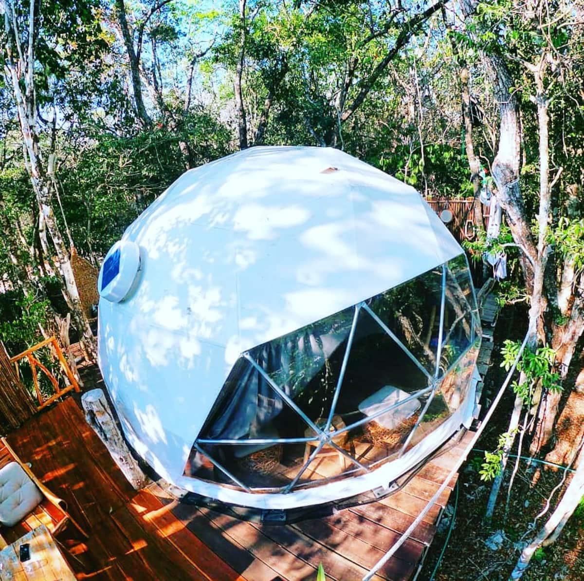 Jungle Eco Tree House in Mexico