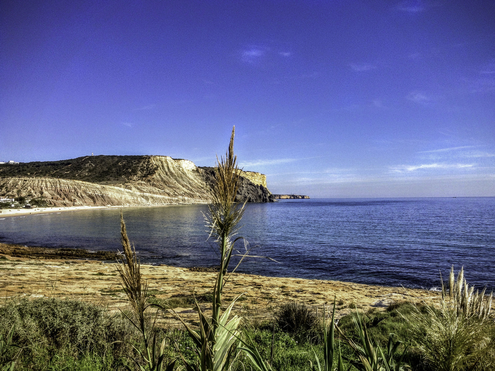 Luxury Portugal Airbnb