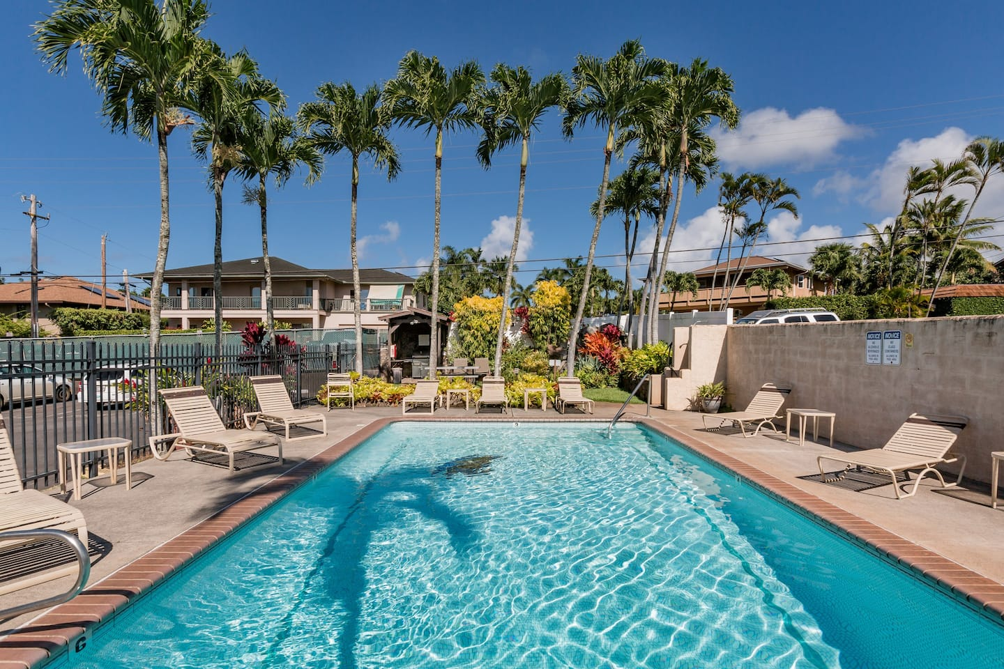 Best Airbnb in Hawaii With Pool