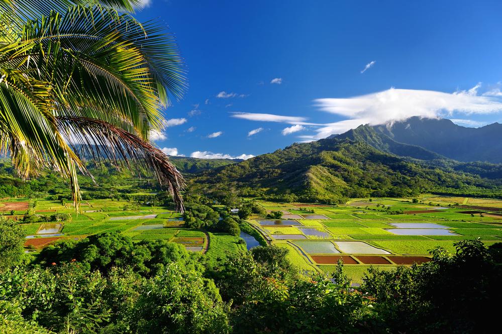 Couples Kauai Airbnb