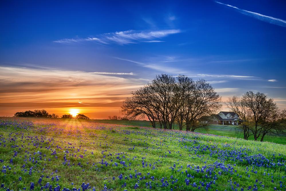 Glamping Texas