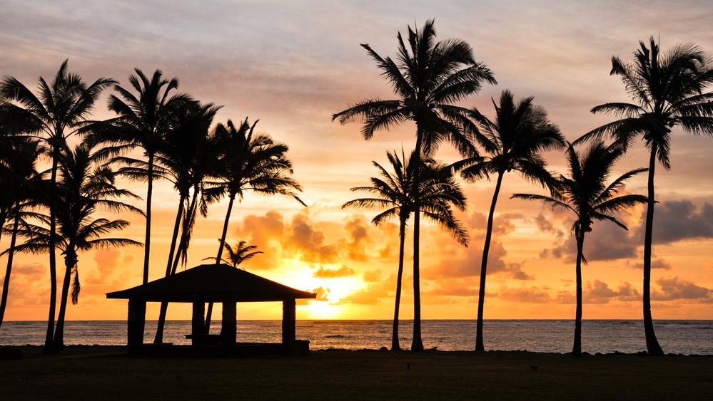 Kauai Family Airbnb