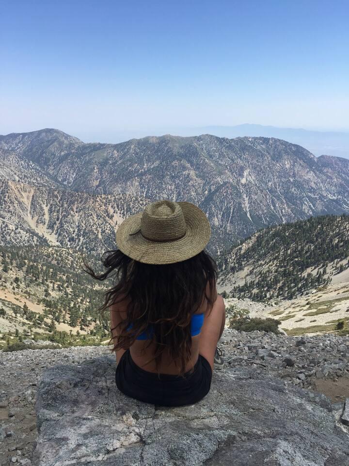 Laguna Beach Airbnb Experiences