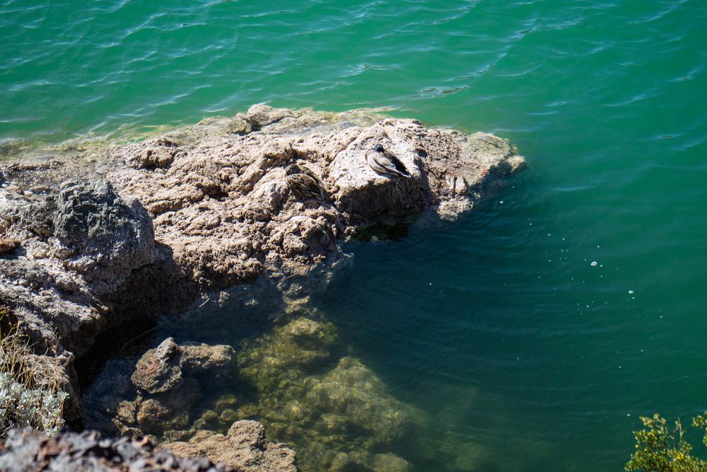 Luxury Lake Havasu Airbnb
