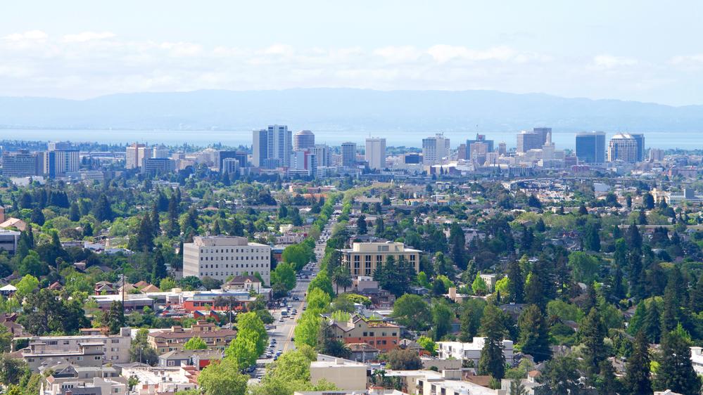 Single Berkeley Airbnb