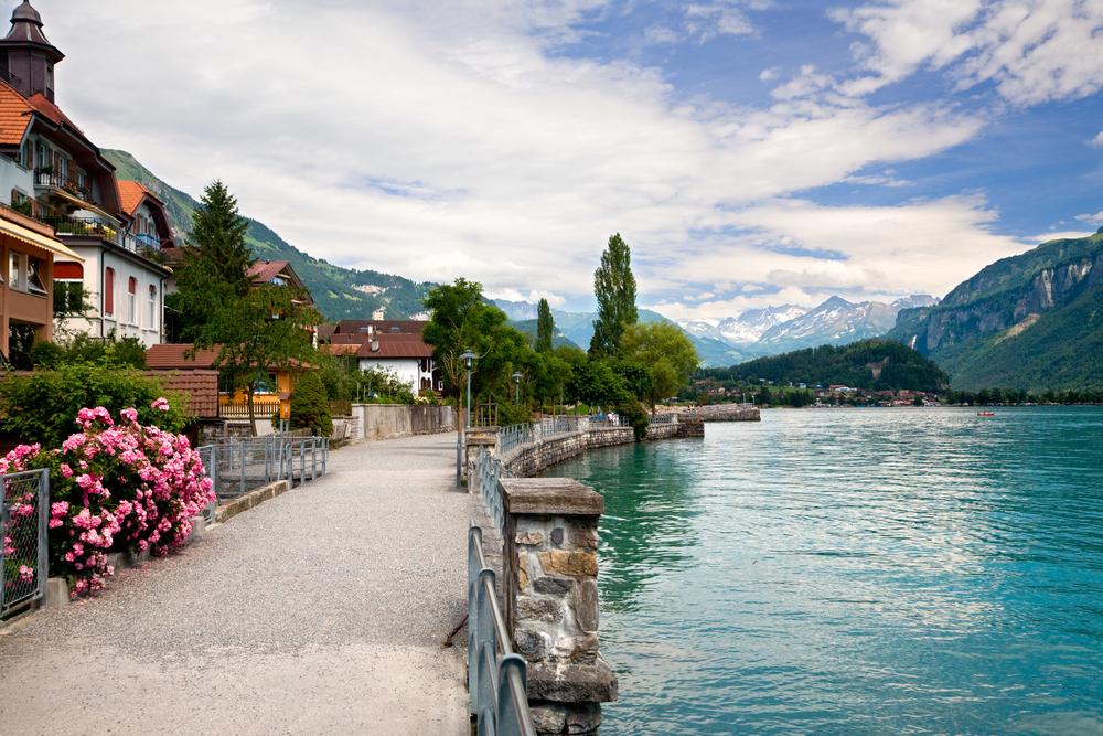 Swiss Alps Airbnb