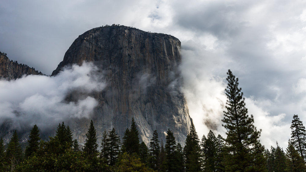 Yosemite Airbnb For Groups