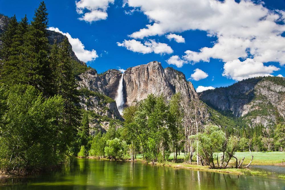 Yosemite Airbnbs