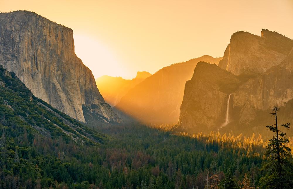 Yosemite Tours