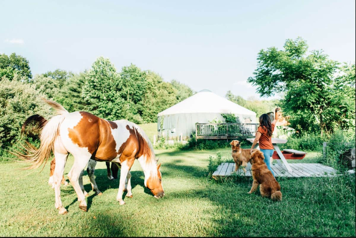 Horse & Girl in front of Glamping Yurt