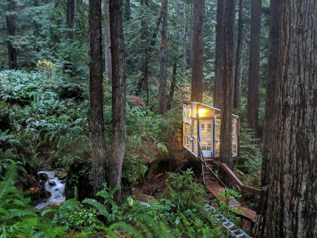 norcal glamping treehouse cabin luxury