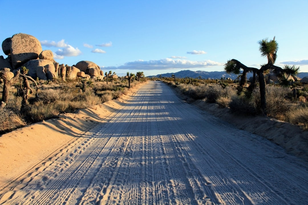 Sandy road in Joshua Tree National Park