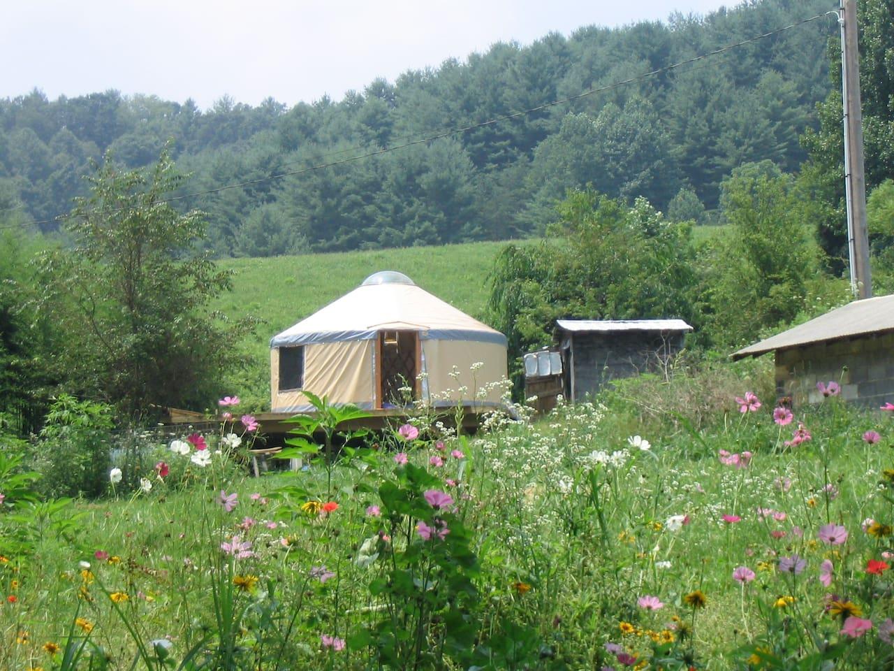 Charming Yurt Glamping Asheville