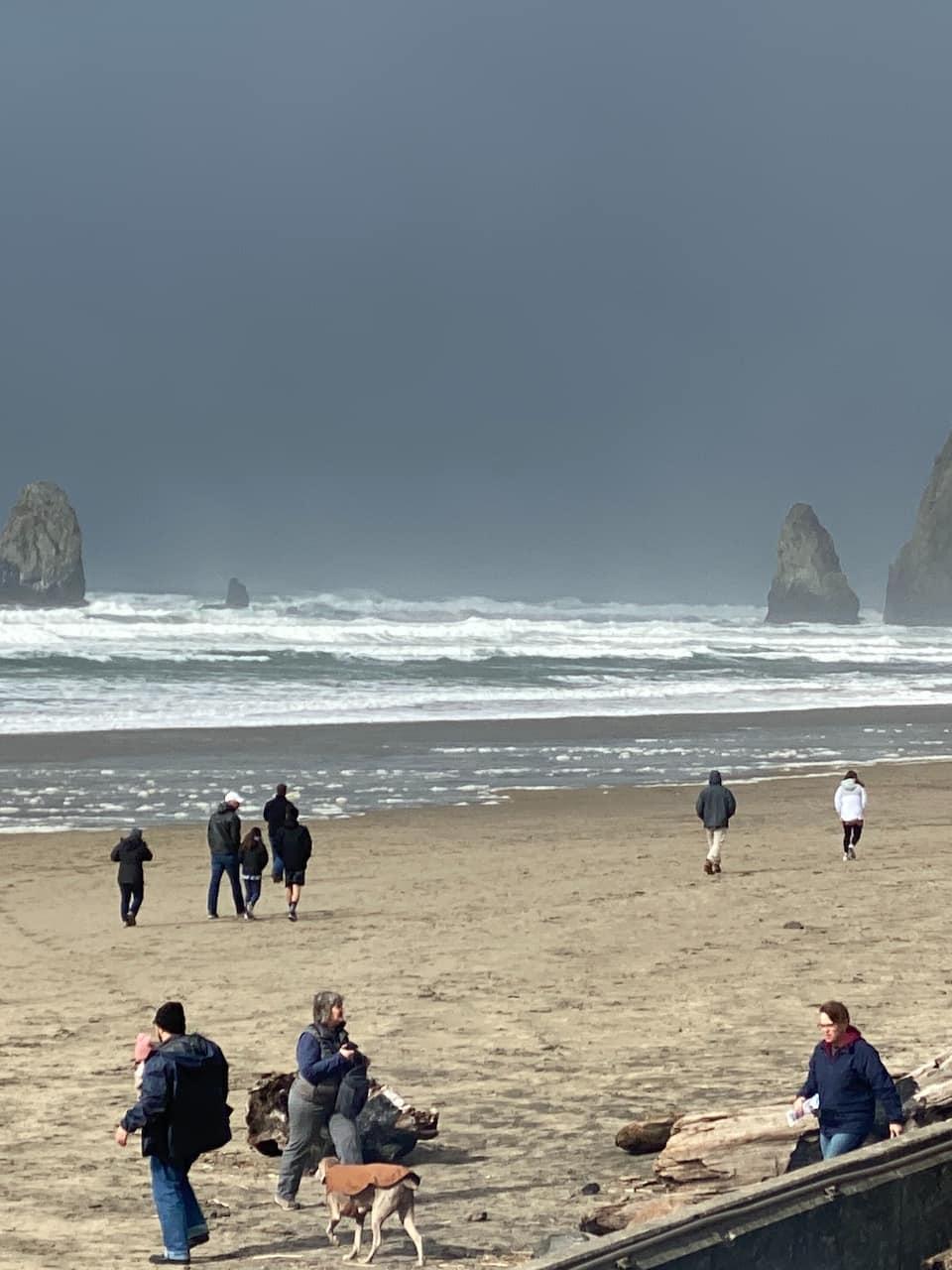 Coastal Oregon Tours