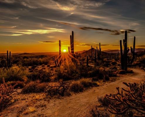 Mesa Arizona Airbnb